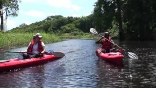 Suriname. Kayakken op de Coropinakreek