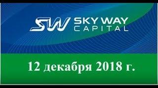 12. 12. 2018г  Вебинар SKYWAY  Всё самое актуальное и интересное в мире SkyWay