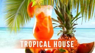 ATB - The Summer (Ice & Dmirtiy Rs Remix) [MODERN]