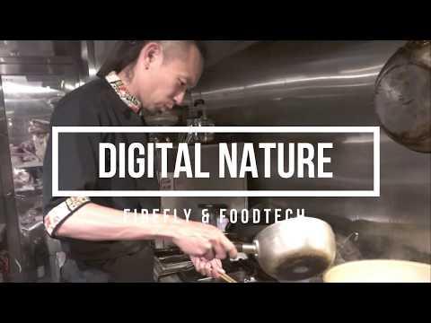 森田隼人「蛍&プロジェクションマッピング&食」デジタルネイチャーDigital Nature レストランは進化する!