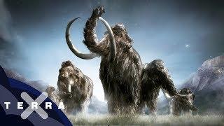 Soll man Mammuts und Neandertaler klonen?