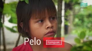 Día del Respeto a la Diversidad Cultural: Palabras en guaná - Canal Encuentro