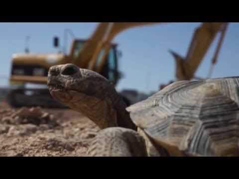 Clark County, Nevada - Desert Conservation Program - Construction Worker Training Video