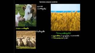 512  Аргентина сельськое хозяйство