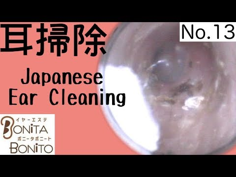 Cozy Japanese Ear Cleaning #13
