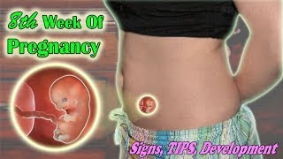 8th Week Of Pregnancy, The Signs, Growths And Tips To A Healthy Pregnancy.