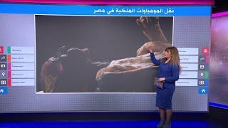 المصريون يترقبون الموكب التاريخي لملوك وملكات الفراعنة