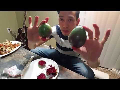 💖57- ăn trái Xương Rồng có ngon không ta?🌵🌵