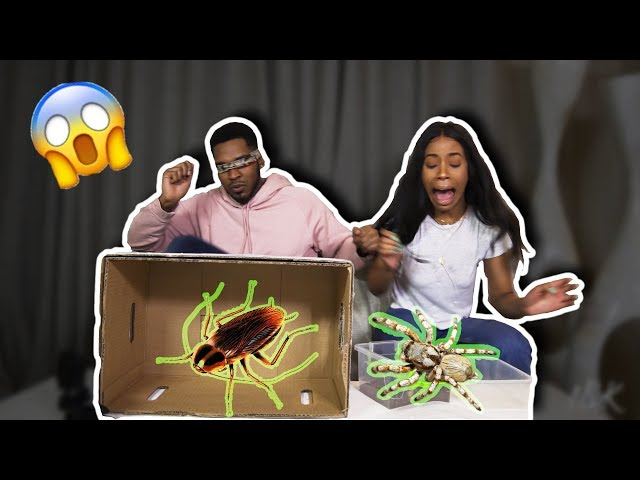 WHAT'S IN THE BOX CHALLENGE GONE WRONG