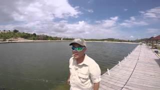 Video #teamSGPrawnKing Goes On A Fishing Trip To Barelang Pond Batam download MP3, 3GP, MP4, WEBM, AVI, FLV Agustus 2018