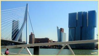 Modernes ROTTERDAM, am größten Hafen Europas (Spido B.V. Harbor cruises)