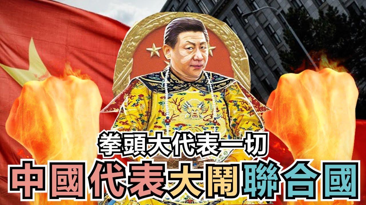 中國代表大鬧聯合國人權會,拍桌秀誰拳頭大,小粉紅護航共產黨的真正原因