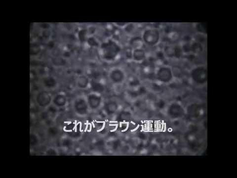 ブラウン運動 - YouTube