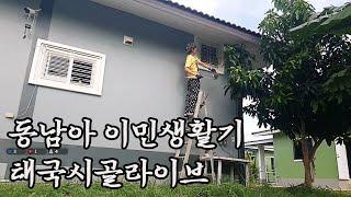 (신입)태국 이싼 이민시골생활  이시국에 담뱃값벌어보자