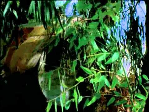NTOKYMANTER - MEGARA 1973