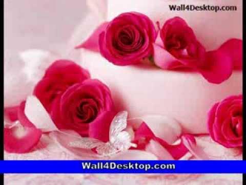 Beautifull Flower Wallpapers - YouTube