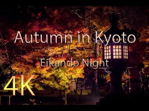 Autumn In Kyoto - Eikando Night