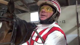 Maine harness horsemen give candid opinions of some horse names