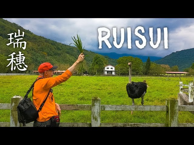 Short trip to RUISUI in Hualien County (花蓮瑞穗短暫之旅)