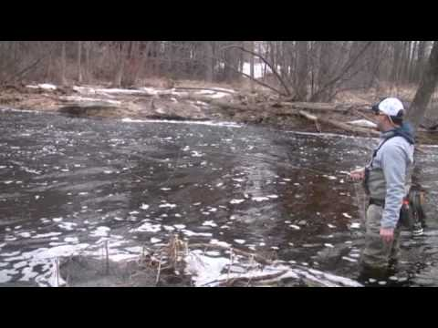 Great Lakes Steelhead 101