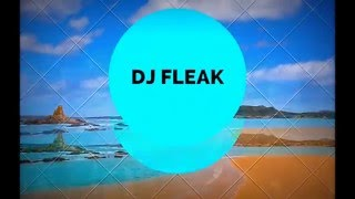 INTERNATIONAL DUBSTEP - DJ FLEAK