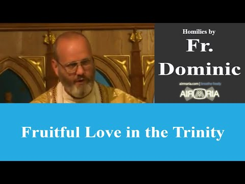 Fruitful Love in the Trinity - May 27 - Homily - Fr Dominic