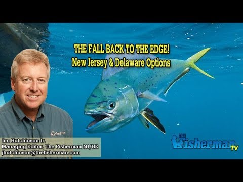 September 26, 2019 New Jersey/Delaware Bay Fishing Report With Jim Hutchinson, Jr.