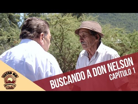 Buscando a Don Nelson | Usted no reconoce a Chile