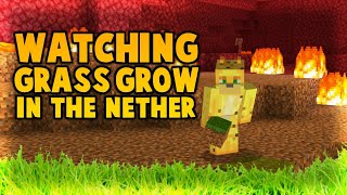 Watch Me Watch Grass Grow... In The Nether?