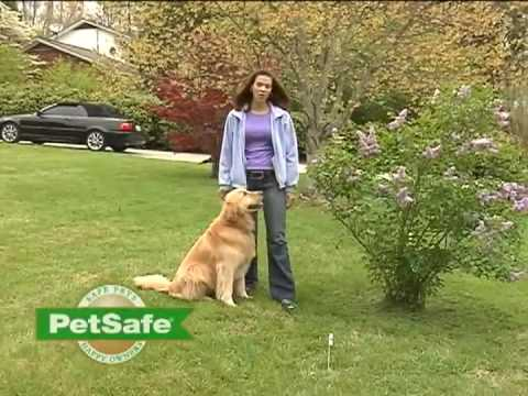 PetSafe® Training Your Dog: PetSafe Containment System - www.petsafe.net