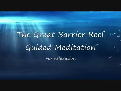 Guided Visualization for relaxation: The Great Barrier Reef