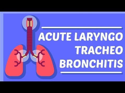 What is Croup/Acute Laryngo-Traccheo-Bronchitis?