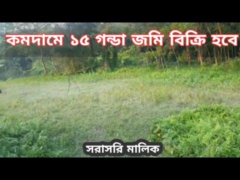 ১৫ গন্ডা জমি বিক্রি হবে। bd property   bproperty   কম দামে জমি