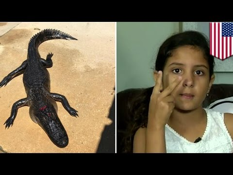 Gator attacks: 10-year-old girl fights off alligator by poking it in the nostrils - TomoNews