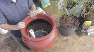 GroBucket Hack - How To Use A GroBucket To Make A Large Planter Self-watering.