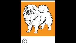Как нарисовать собаку? Учим детей рисовать собаку