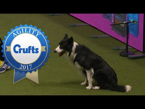 Agility - Large International Invitation Final (Part 1) | Crufts 2017