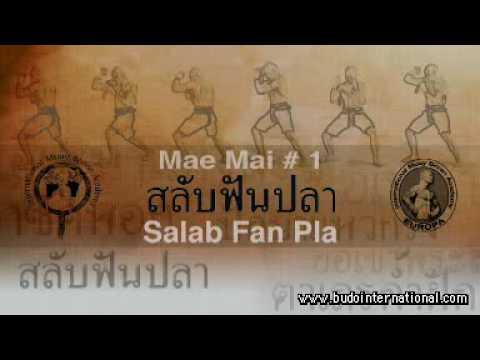 Muay Hai Boran Forms Mae Mai Vol