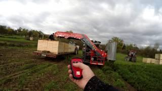 Dewulf P3K Profi + Valtra N82H + Valtra T132V kopanie marchwi 2016 prędkość - 4,5 km/h