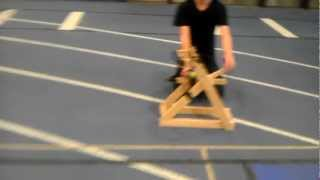 5 Arm Murlin Trebuchet, Engineering Project