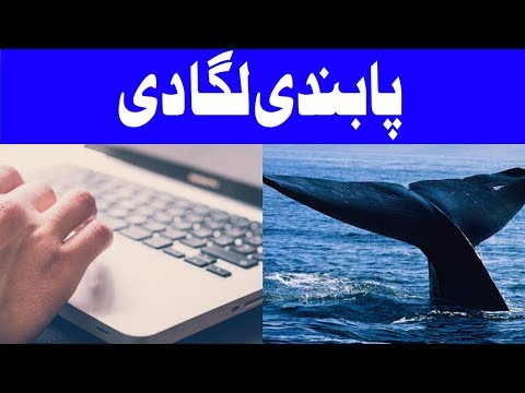 Blue Whale Game Banned in Pakistan | Headlines 12 PM | 10 September 2017