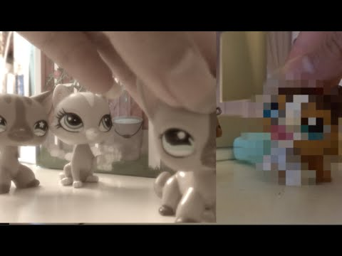 Lps My Hopeless Romance Season 2 Episode 2 {Tiffany's Past & A Familiar Face}