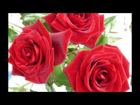 Букеты красных роз - классика!