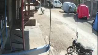 Funny accident hit and run case funny india funny blooper pakistan punjab