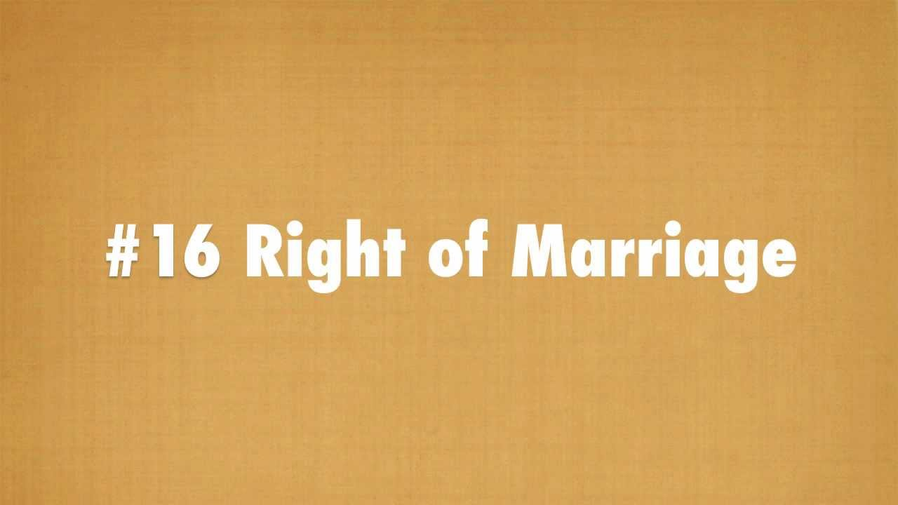 human rights article 16 gay marriage
