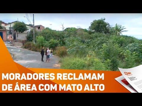 Moradores reclamam de área com mato alto - TV SOROCABA/SBT