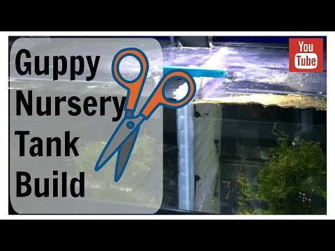 DIY Guppy Nursery Tank Build