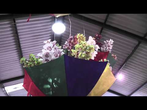 Darling orchards show