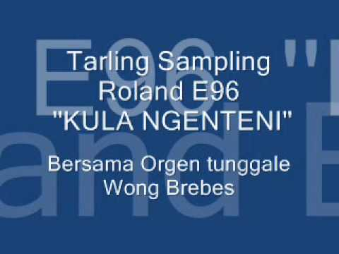 NGENTENI TARLING SAMPLING ROLAND E96