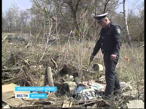 Вести Воронеж от 30.05.2015 Вечерний выпуск (19.35)